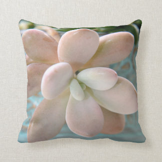 Succulent Sedum Pink Jelly Bean Plant Throw Pillow