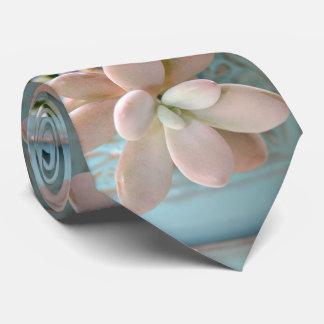 Succulent Sedum Pink Jelly Bean Plant Tie