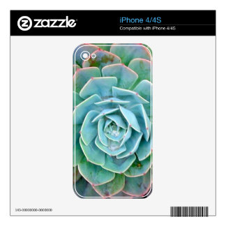 Succulent Skin For iPhone 4S