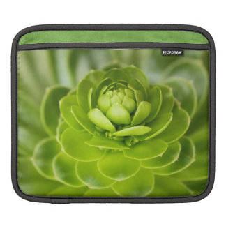 Succulent Sleeves For iPads