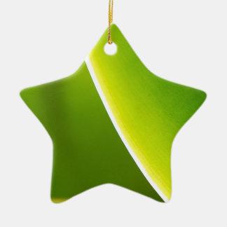Succulent Sunlight Christmas Tree Ornaments