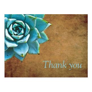 Succulent Thank You Watercolor Rustic Brown Postcard