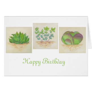 Succulent Trio birthday card