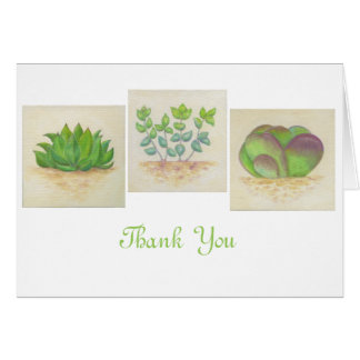 Succulent Trio thank you card