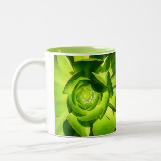 Succulent verde taza de café