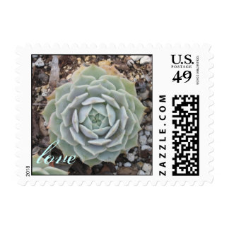 succulent wedding love stamp