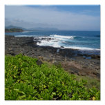 Succulents 2 de Kauai Impresiones