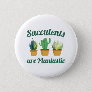 Succulents Are Plantastic Pinback Button