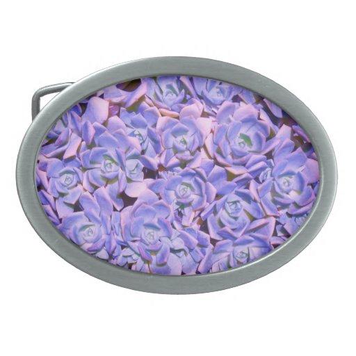 Succulents azules hebillas cinturon ovales