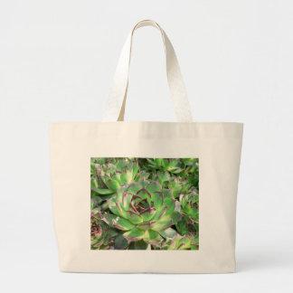 Succulents Bolsas