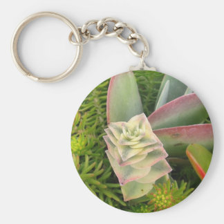 Succulents bonitos llavero redondo tipo pin