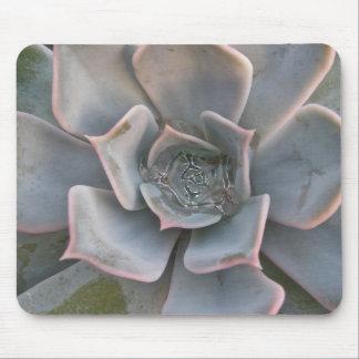 Succulents coloridos Mousepad #1