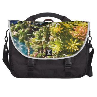 Succulents con el vidrio azul bolsas de portátil