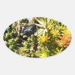 Succulents con el vidrio azul pegatinas