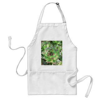 Succulents Delantales