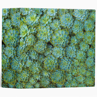 Succulents - Echeveria plant Binder