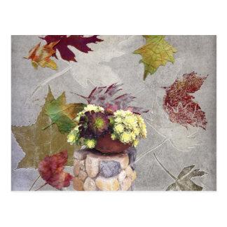 Succulents en otoño postales