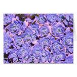 Succulents florales azules alterados tarjeton