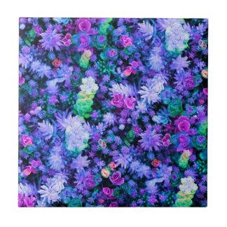 Succulents florales rosados y púrpuras femeninos azulejos ceramicos