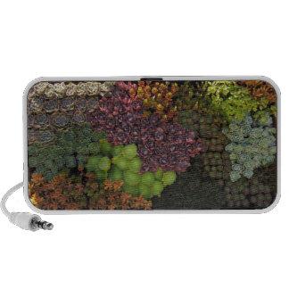 Succulents iPod Altavoz