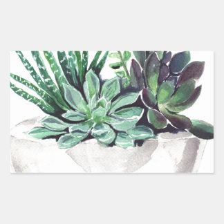Succulents jpg rectangular sticker