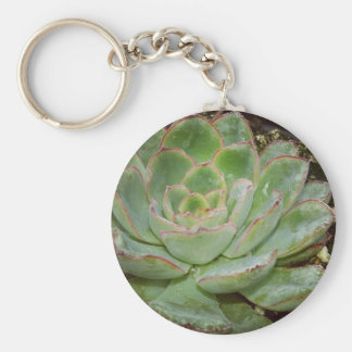 Succulents Keychain