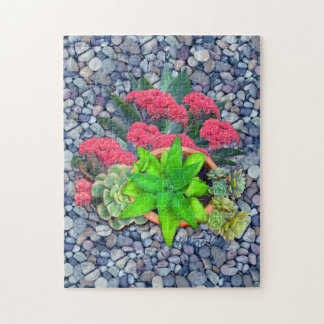 Succulents on a riverbed jigsaw puzzle