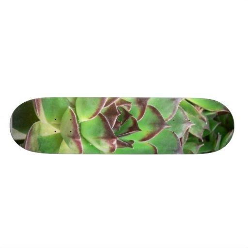 Succulents Patín Personalizado