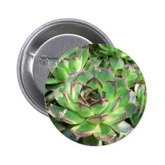Succulents Pin Redondo De 2 Pulgadas
