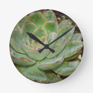 Succulents Round Clock