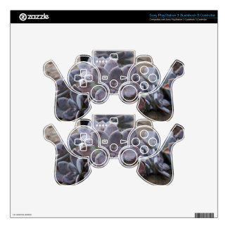 Succulents Skins For PS3 Controllers