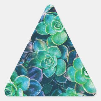 Succulents, Succulent, Cactus, Cacti, Green, Plant Triangle Sticker