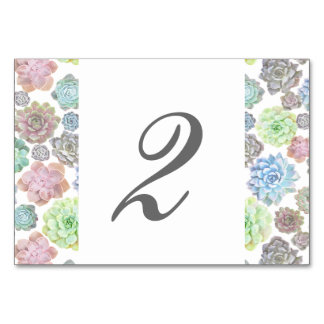 Succulents table card