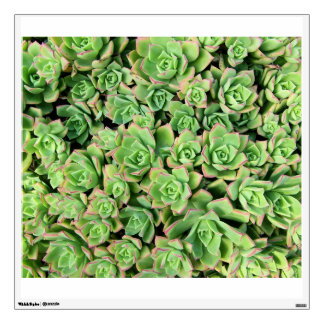 Succulents Wall Decal