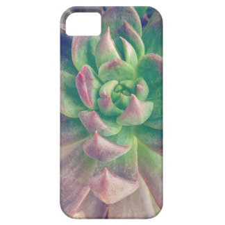 Succulicious Pink Tipped Echeveria iPhone SE/5/5s Case