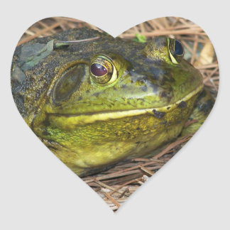 Such A Lovely Frog Heart Sticker