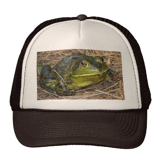 Such A Lovely Frog Trucker Hat