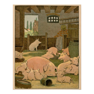 Suckling Pigs and Mother on the Farm Poster