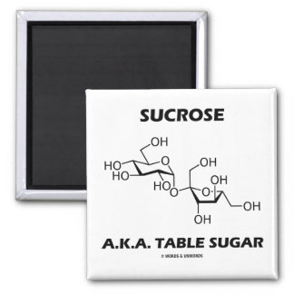 Sucrose A.K.A. Table Sugar (Chemical Molecule) 2 Inch Square Magnet