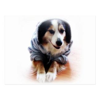 Sudadera con capucha que lleva del perro de tarjeta postal