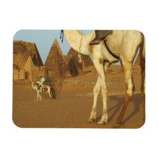 Sudán, del norte (Nubia), pirámides de Meroe con Iman De Vinilo