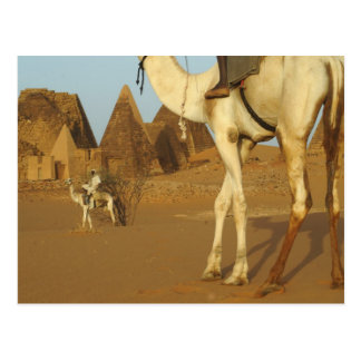 Sudán, del norte (Nubia), pirámides de Meroe con Postal