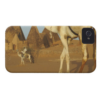 Sudan, North (Nubia), Meroe pyramids with iPhone 4 Case-Mate Case