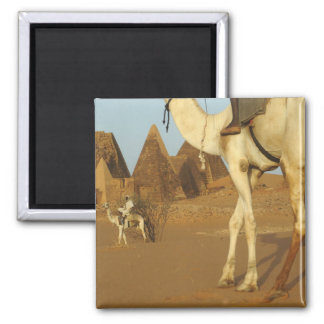 Sudan, North (Nubia), Meroe pyramids with Magnet