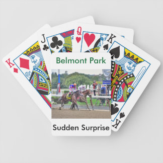 Sudden Surprise And Get Jets Bicycle Playing Cards