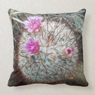 Sudoeste floreciente floral de los cactus del almohadas