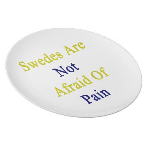 Sueco no tienen miedo de dolor platos de comidas