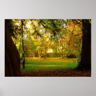 Sueño 1 del otoño poster