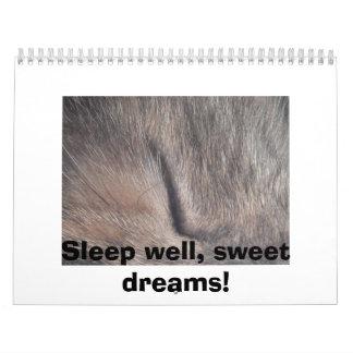 ¡Sueño bien, calendario de los sueños dulces!