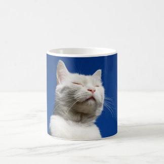 Sueño blanco del gato taza básica blanca